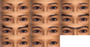 Male Eyebrows (DW7E).png