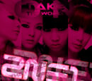 Take The World On - 2NE1