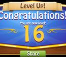 Levels Sixteen to Twenty