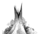 SchattenClan-Territorium