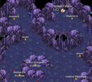 Twilight Caverns Lvl 1