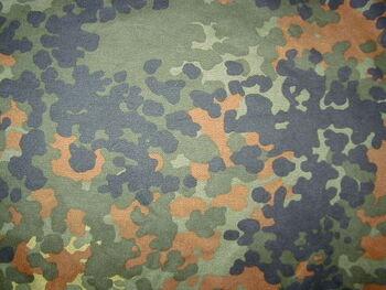 6fa57a38819 0---tvserials---camouflage.wikia.com A TACS AU Arid Urban Camo ...