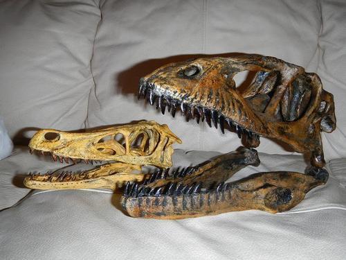 Image - Velociraptor vs deinonychus.jpg - Park Pedia ...
