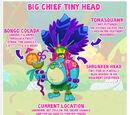 Big Chief Tiny Head