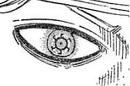 Niels enhanced eye.png
