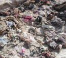 Tuareg Atrocities