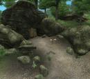 Seitliche Höhle