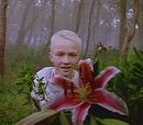 Der Prinz von Arborea (Episode)