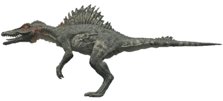 Spinosaurus Size - Vie...