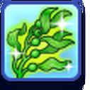 LTR Mermadic Kelp.png