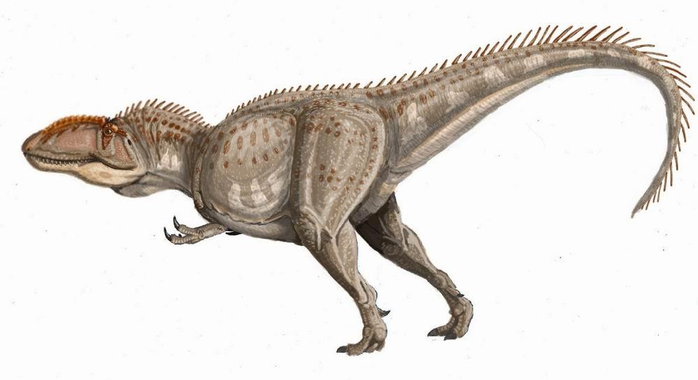 User blog:TheReturnOfTheKing/The Next T. rex ...