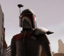 Carthern Fett