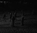 Demon Worshipers