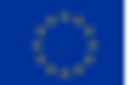European Union flag .png