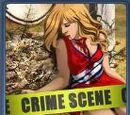 Wiki Criminal Case
