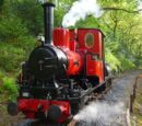 Douglas (narrow gauge)