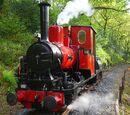 Douglas (narrow gauge)