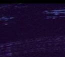 Royal Cat Nap