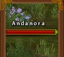 Andanora