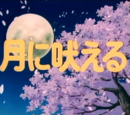 I Howl at the Moon (OVA)