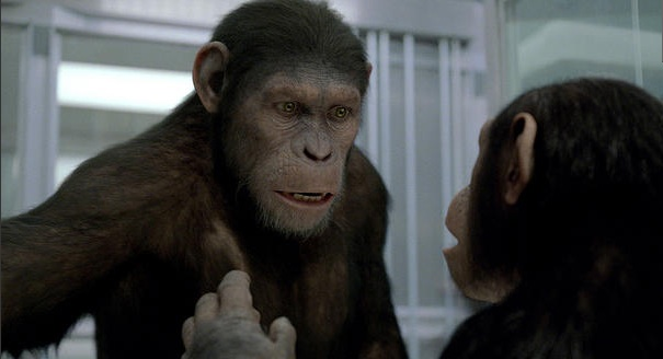 Cornelia - Planet of the Apes: The Sacred Scrolls