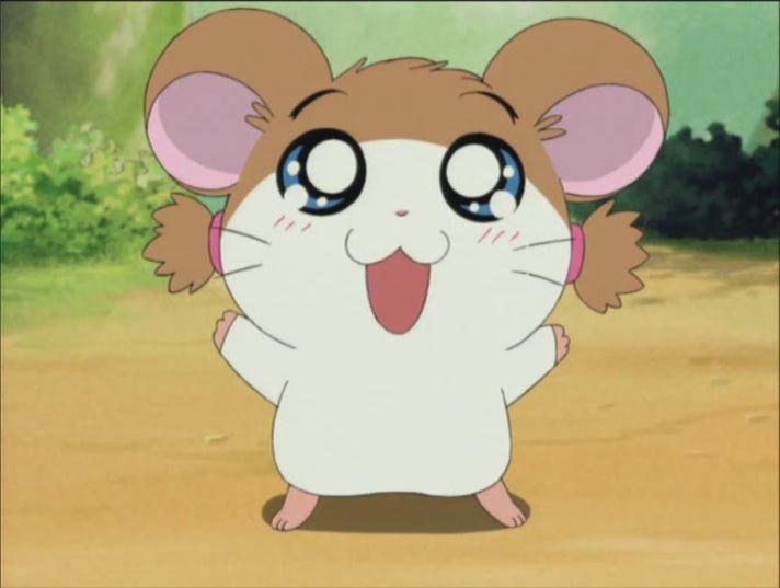 Hamtaro Oshare hamtaro oshare related keywords & suggestions - hamtaro ...
