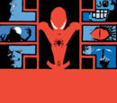 Marvel Knights: Spider-Man Vol 1 1