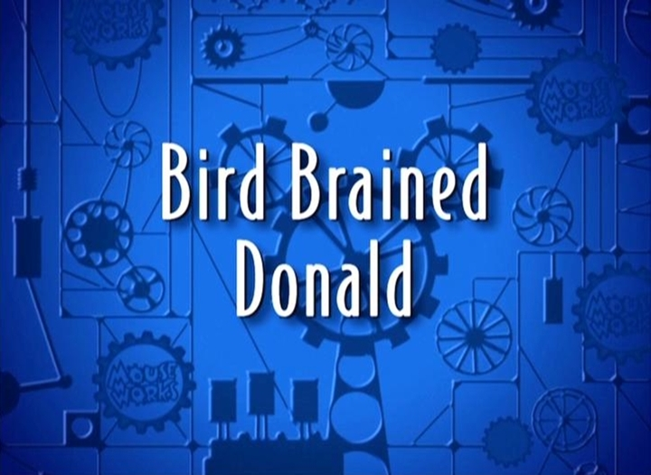 Realm Of Memories Bird Brained: Bird Brained Donald