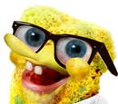 SpongeBoxxx Wiki