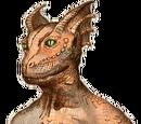 The Drakon