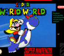 Super Wario World