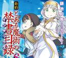 Shinyaku Toaru Majutsu no Index Light Novel Volume 08