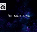 Nocna Sowa (odcinek)
