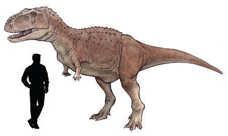 Abelisaurus Dinopedia The Free Dinosaur Encyclopedia
