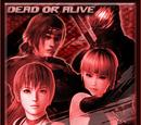 Dead or Alive 5 Achievement Icons