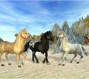Jorvikisk ponny