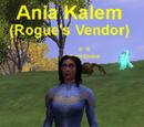 Rogue's Vendor