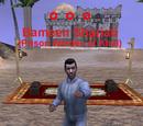 Bameen Shariati
