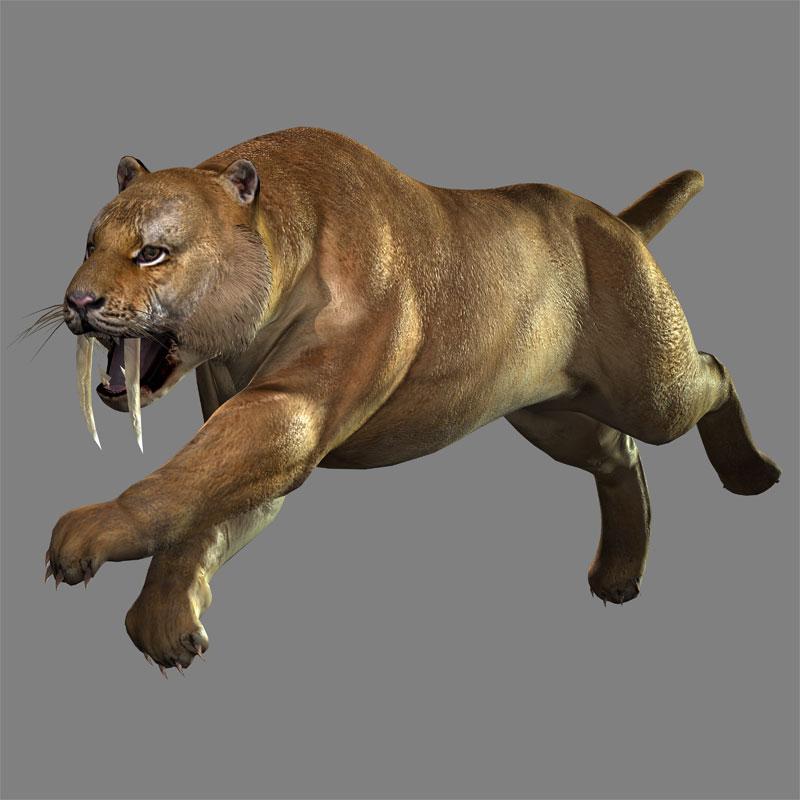 Saber-toothed Cat (DW8 DLC).jpg