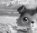 Abercorgi and Fetch