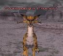 Champaign Coeurl
