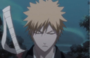 240Ichigo concentrates.png