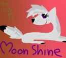 Moon Shine/Galeria