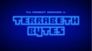 Terrabeth Bytes Title Card.png
