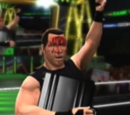 New-WWE Money in the Bank 4