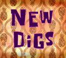 New Digs (transcript)