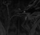 Devil Karma: Oscuridad Eterna