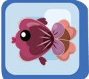 Red Purple Pansy Fish