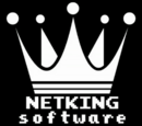 Netking Software