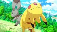 Bunnelby & Buneary | Pokemon, Cute pokemon, Pokemon teams